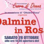 dalmine_rosa